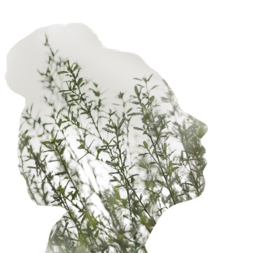 Double exposure of a woman's facial silhoutte with foliage